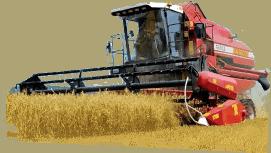 Главная  traktoro-seno