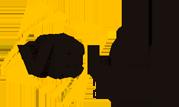 Главная  logo-1