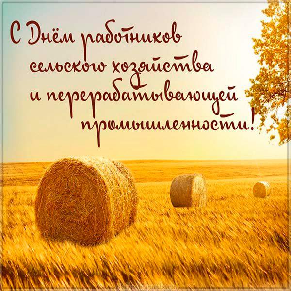Поздравления с Днем сельского хозяйства ! Новости  c888-i01